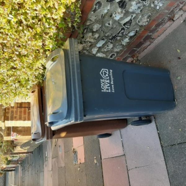 SEESL - 02/12/19. Outside 39 Vicarage Road, Old Town. Please remove brown gw bin (no permit) and surplus black refuse bin asap.-31 Vicarage Road, Eastbourne, BN20 8AL
