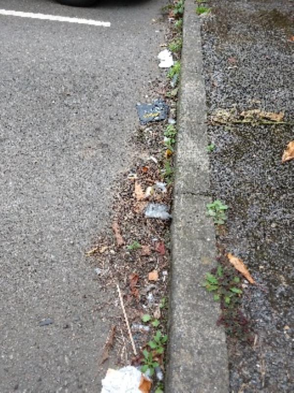 Chester Street carpark needs litterpick-16 Chester Street, Reading, RG4 8JH