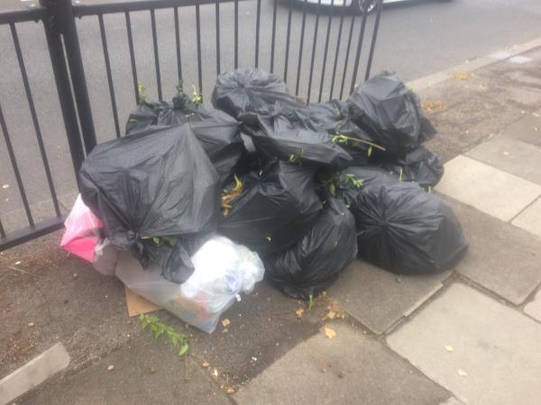 Southend Lane opp 184 bags of garden waste-184 Southend Lane, Bellingham, SE6 3DP