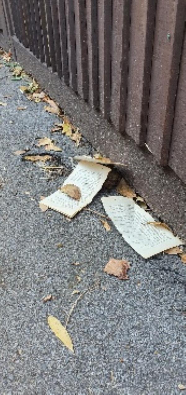 Human excrement in alleyway next to girls school ( AGAIN!!!) Cameras needed!!!-15 Kendrick Road, Reading, RG1 5DU