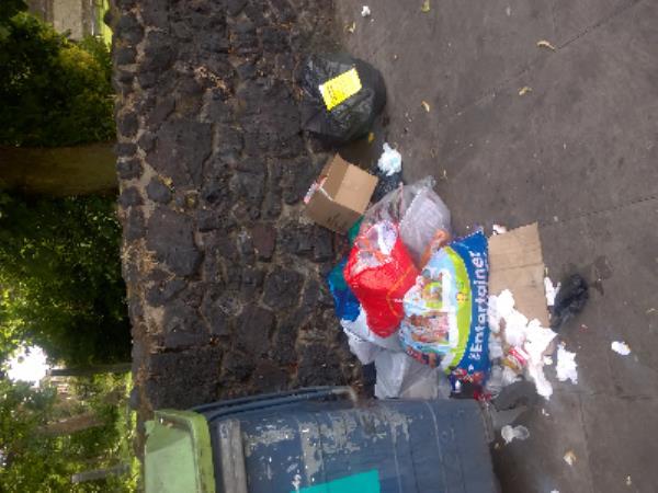 dommestic waste-205 Little Ilford Ln, Manor Park, London E12 5PJ, UK