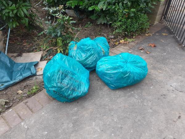three bags of garden waste-153 Malham Road, London, SE23 1AL