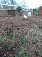 polythingy and other rubbish in bushes-26 Wren Way, Farnborough GU14 8SZ, UK