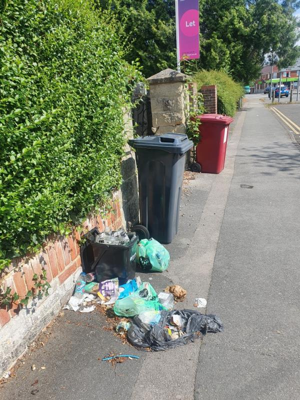 This rubbish has been piled up here for the past few weeks causing bad smell. It's making the road unpleasant.-149 Whiteknights Road, Reading, RG6 7BD