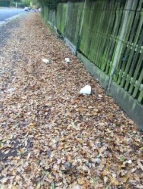 Please clear leaves and polystrine-182 Beckenham Hill Road, Beckenham, BR3 1UL