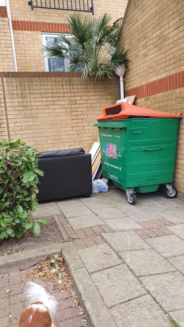 Rubbish -63 Angelica Drive, London, E6 6NS