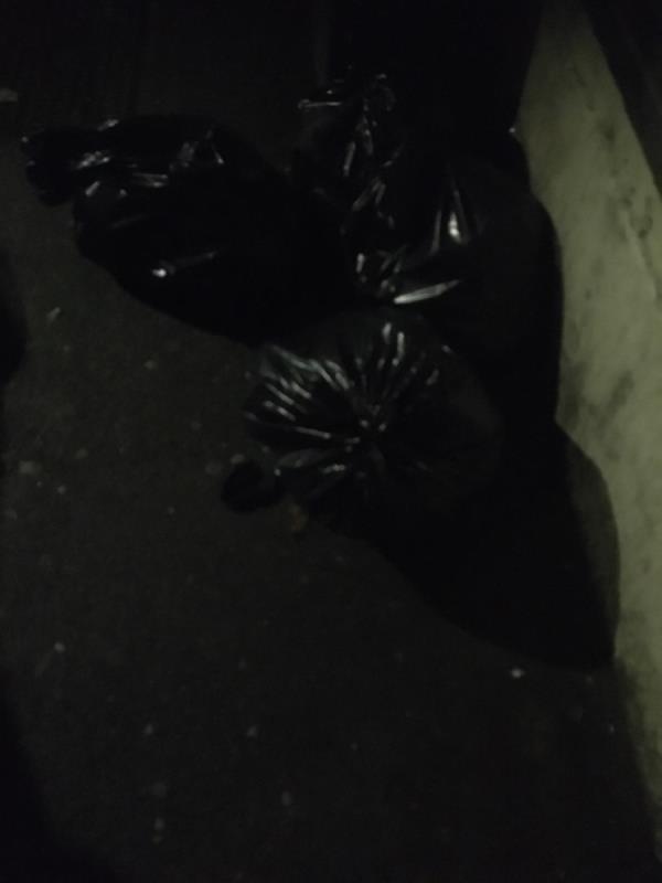 Rubbish -1b Macaulay Road, East Ham, E6 3BD