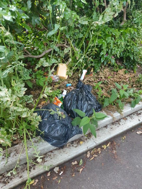 Black bin bags-13 Redstart Close, London, E6 5XB