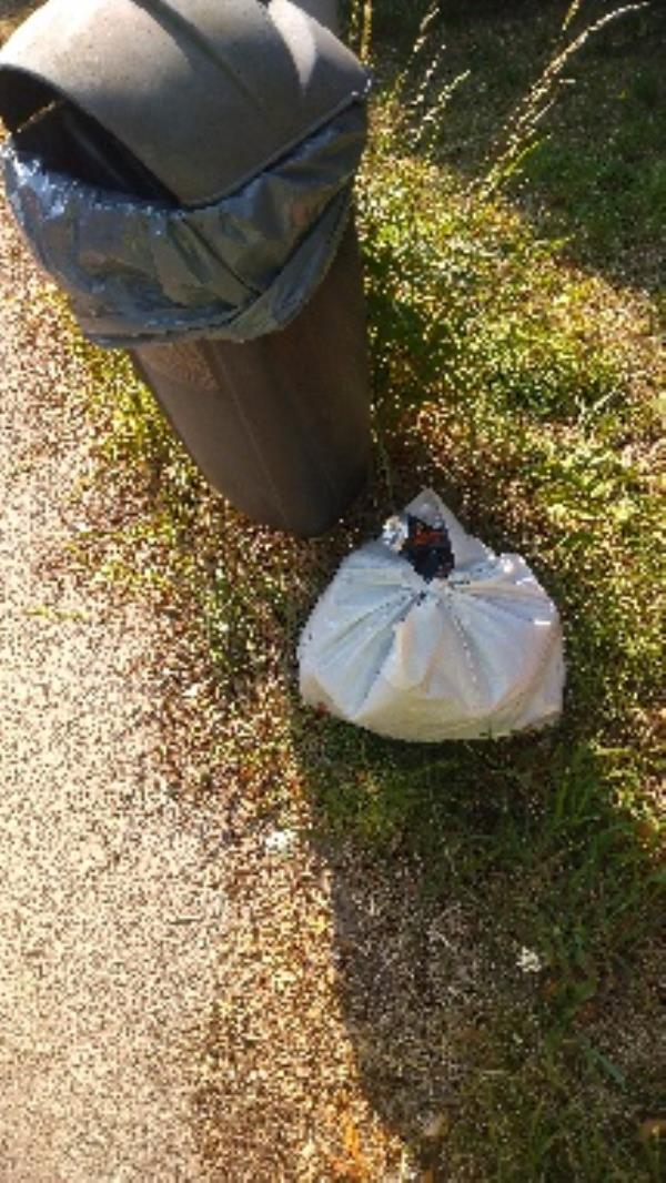 Flytipped household waste no evidence taken -1040 Oxford Road, Reading, RG31 6TQ
