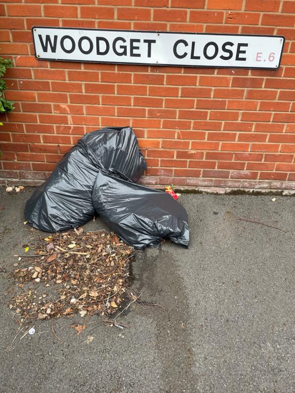 Black bags -45 Kirkham Rd, London E6 5RY, UK