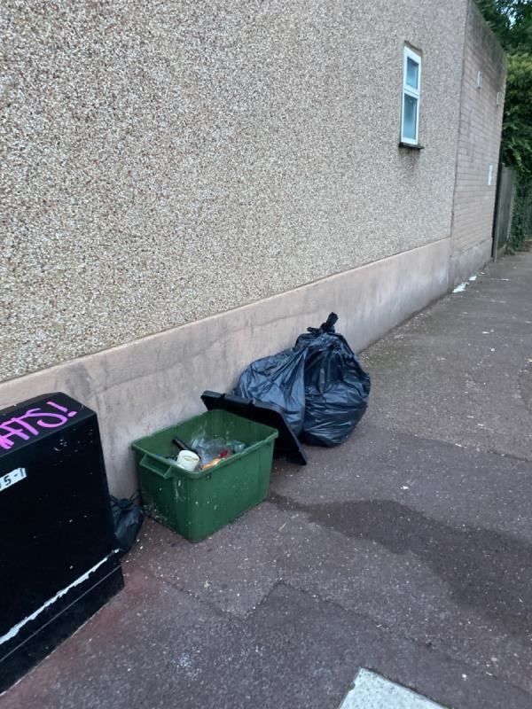 Springfield rd rubbish-53 Springfield Rd, London E6 2AH, UK