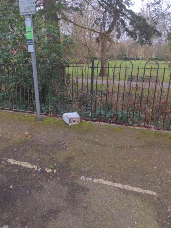 Opposite 54 lewisham park - toilet cistern-54 Lewisham Park, London, SE13 6QP