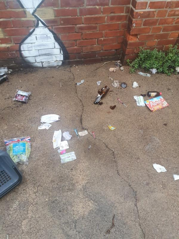 There is an excessive build-up of drug & prostitution related paraphernalia behind the garages leading down to the ORCG. This includes needles & used condoms.-3a Western Elms Avenue, Reading, RG30 2AL
