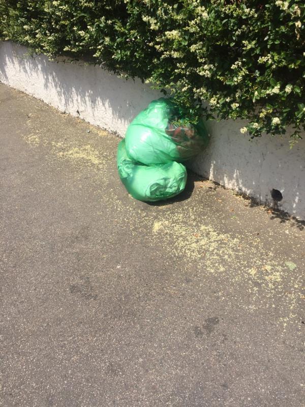 Rubbish dump opposite 21 Essex road E126rf -23 Essex Road, London, E12 6RF