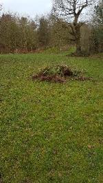 fly dumped garden waste dumped on the little green-38 Nightingale Close, Farnborough, GU14 9