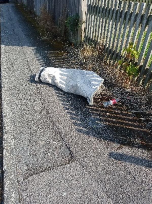 please remove carpet the corner of Wimbourne Gardens -22 Lyndhurst Road, Reading, RG30 6UH