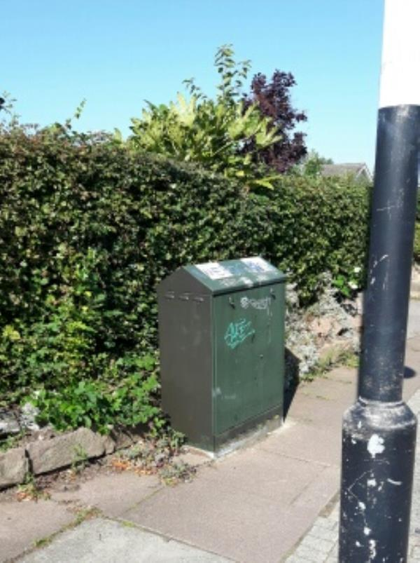 Tagged utility cabinet  -141 Wigston Lane, Leicester, LE2 8TJ