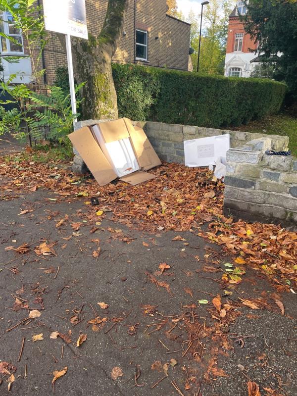 Rubbish / packaging on street -45 Adelaide Avenue, Honor Oak Park, SE4 1LF