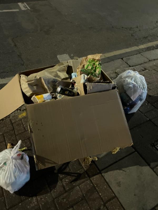 Rubbish  image 1-410 Katherine Road, Green Street East, E7 8NP