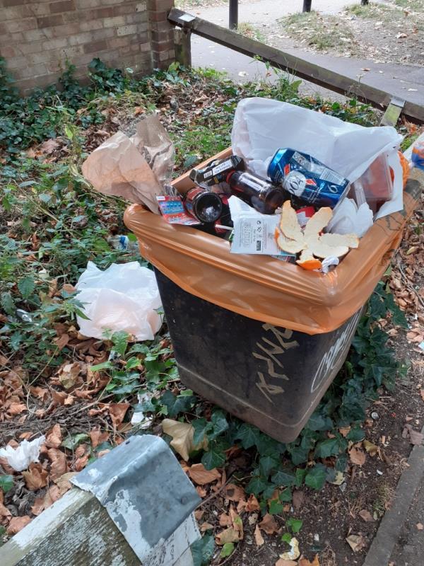 overflowing bin-50 Avon Place, Reading, RG1 3EA