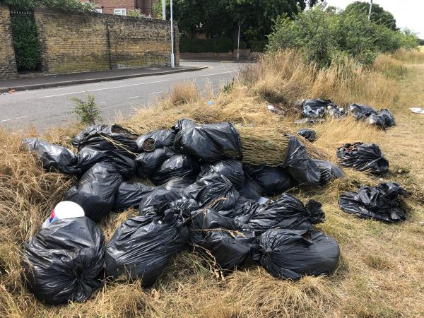Garden waste in black bags-117 Whitta Road, Manor Park, E12 5BX