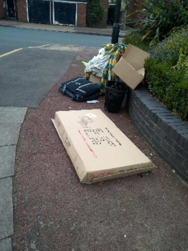 next to lamp post 9household rubbish-124 Mitre Rd, London E15 3JQ, UK
