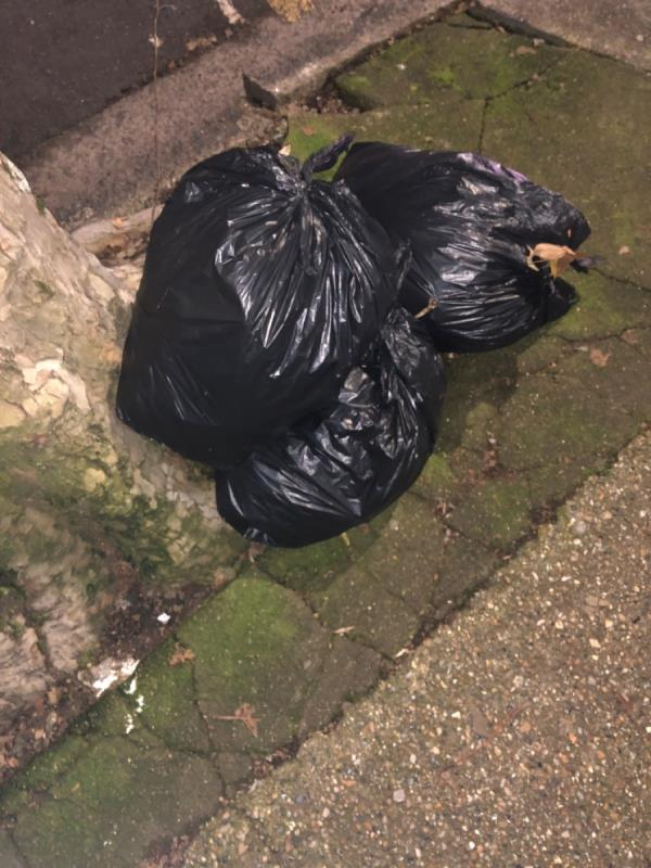 Black bags-38 Cheltenham Gardens, London, E6 3DH