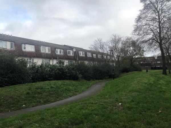 In green space between Hoskins and wilkinson road-44 Wilkinson Road, London, E16 3RJ