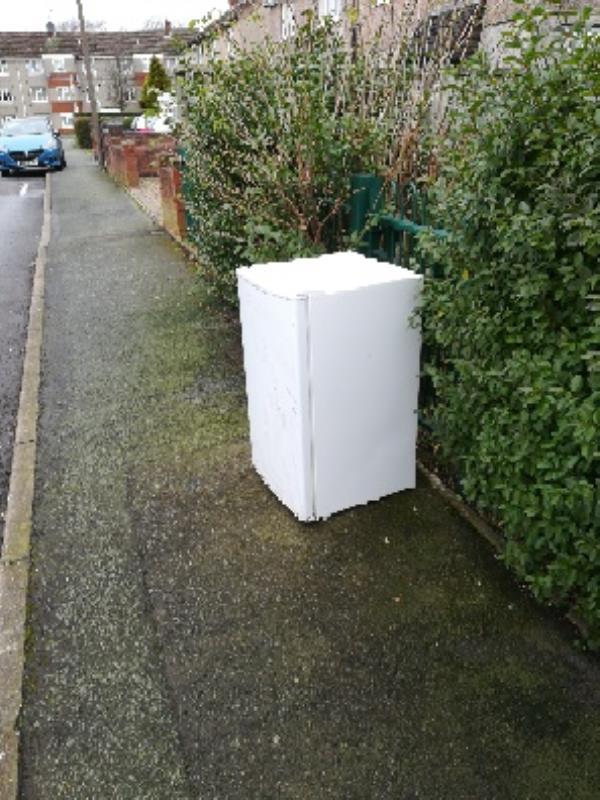 Freezer dumped-19 Elizabeth Avenue, Wolverhampton, WV14 8EA
