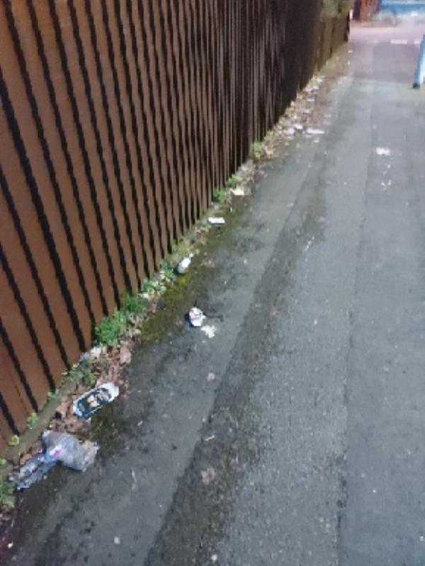 various street litter on etheridge road and junction at green lanes Bilston-91 Green Lanes, Bilston, WV14 6BZ