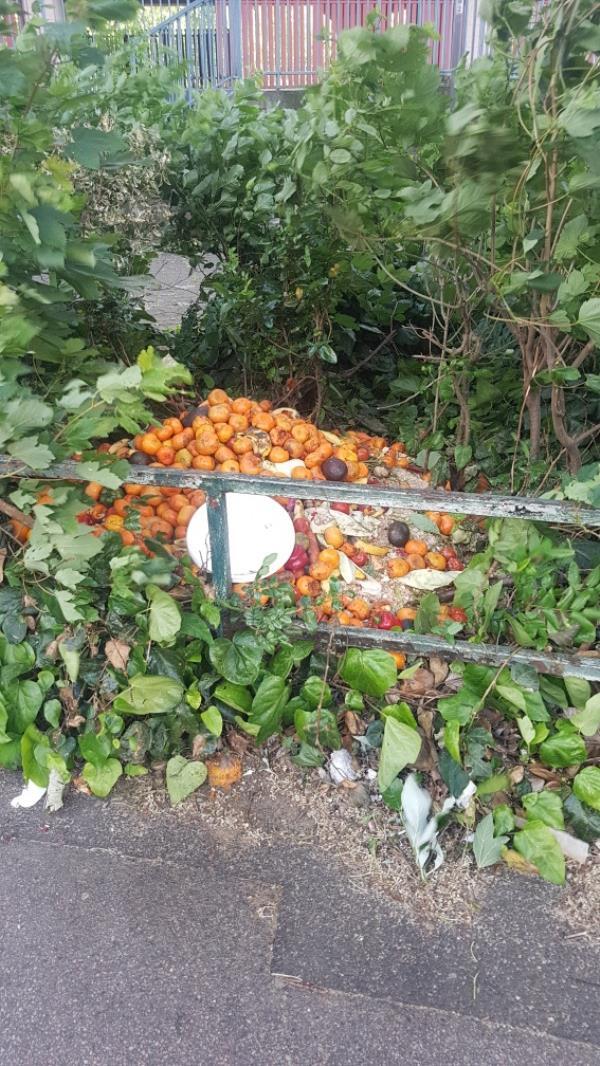 fruit dumped in bushes-30 Jupp Road West, London, E15 2HS