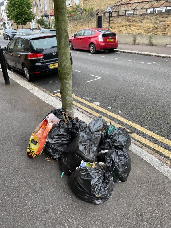 Multiple bin bags left in street.-83 Station Road, London, E7 0AE