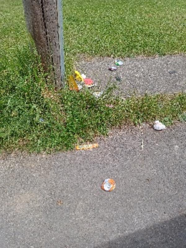 litter picking Lyndhurst road and Ringwood thank you-123 Lyndhurst Road, Reading, RG30 6UA