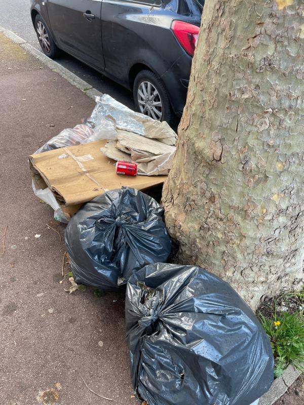 Rubbish -2 Essex Road, Manor Park, E12 6RE