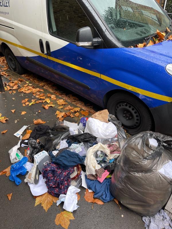 More bags of rubbish-41 Shaftesbury Rd, London E7 8PF, UK