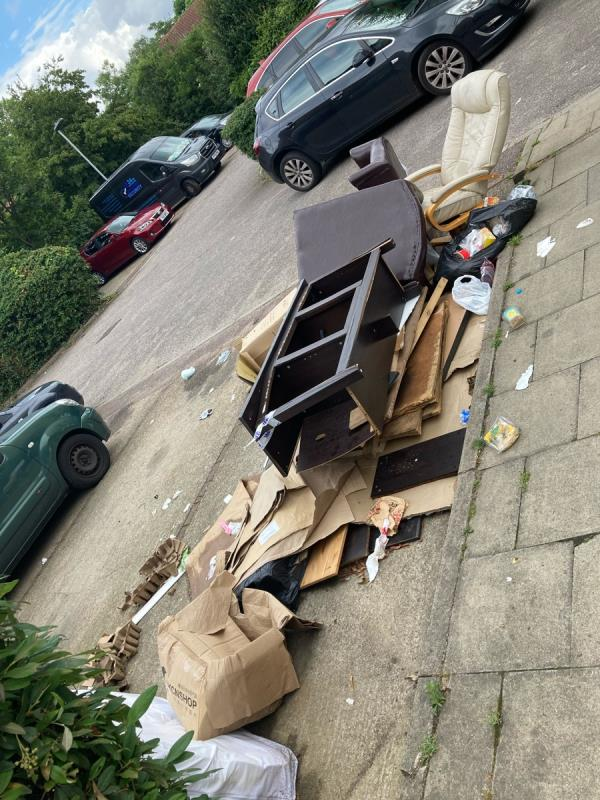 Why is no one clearing this? The tape put around it was broken immediately and the pile continues to grow. Please help, this is attracting vermin and making our living area horrible and embarrassing. We need CCTV, signs and ENFORCEMENT. -57 Baildon Street, London, SE8 4BQ