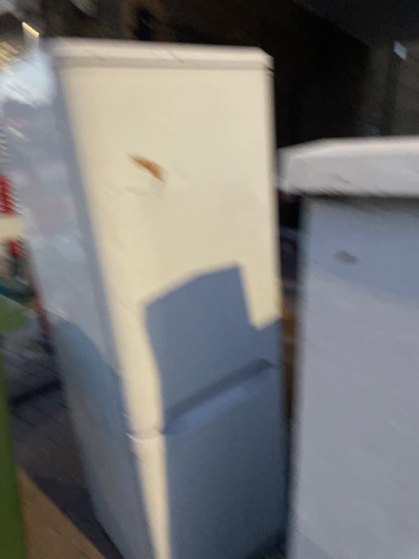 Rubbish  image 1-219 Plashet Road, Plaistow, E13 0QU