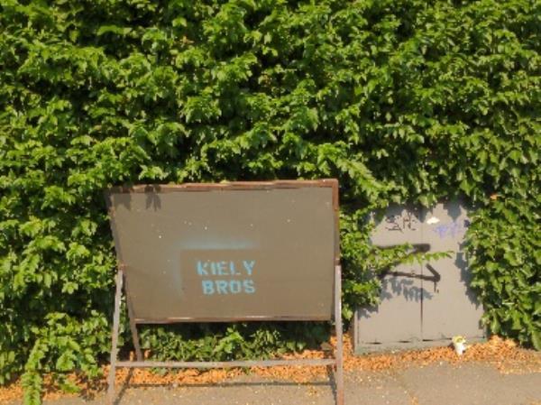 sign dumoed-36 Cholmeley Road, Reading, RG1 3NQ