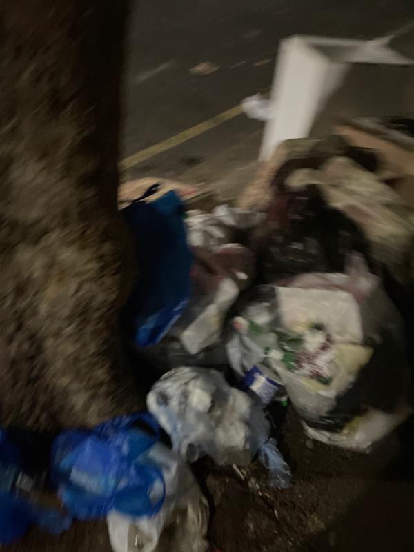 Rubbish  image 1-328B High St N, London E12 6PH, UK