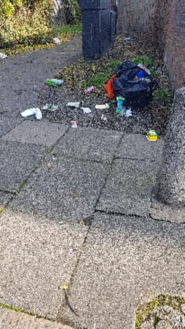 broken rubbish bag-182 Hollybush Street, London, E13 9EB