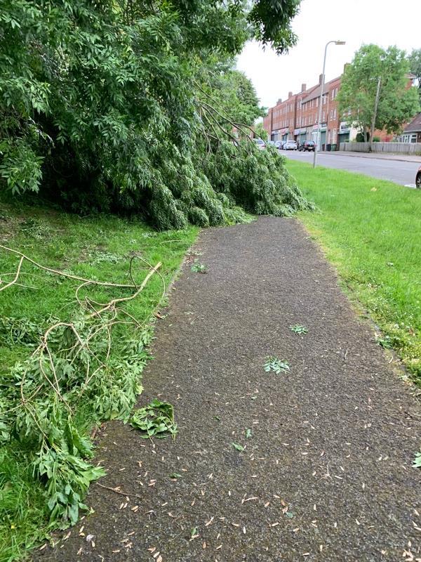 Fallen tree blocking footpath-82 Childs Ave, Bilston WV14 9XB, UK