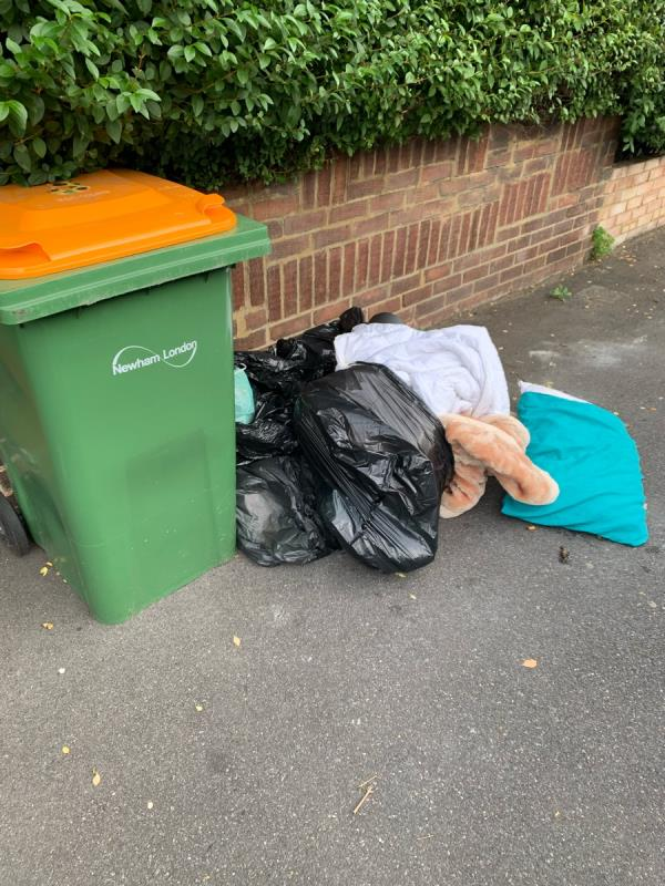 Pile of rubbish that has been left outside house next to bins for days. Dogs leave foul there too. image 1-5 Mafeking Rd, London E16, UK