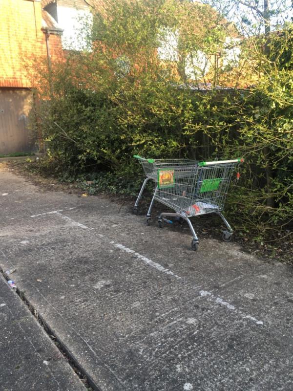Shopping trolleys  image 1-4 Woodget Close, London, E6 5TE