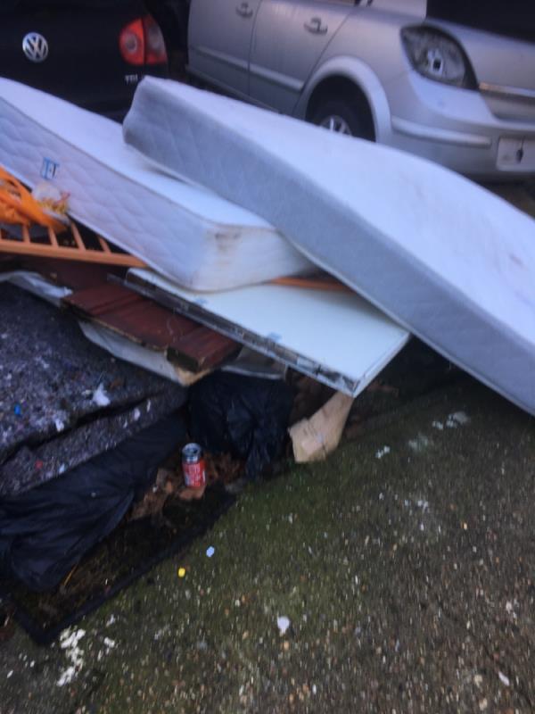 Rubbish  image 1-72 Ruskin Avenue, Manor Park, E12 6PL
