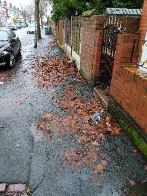 rotting slippy leaves-38 Allen Road, Wolverhampton, WV6 0AN