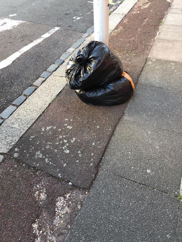 2 black bin bags, near the corner of budget rd-22 Ravenhill Rd, Upton Park, London E13 9BN, UK