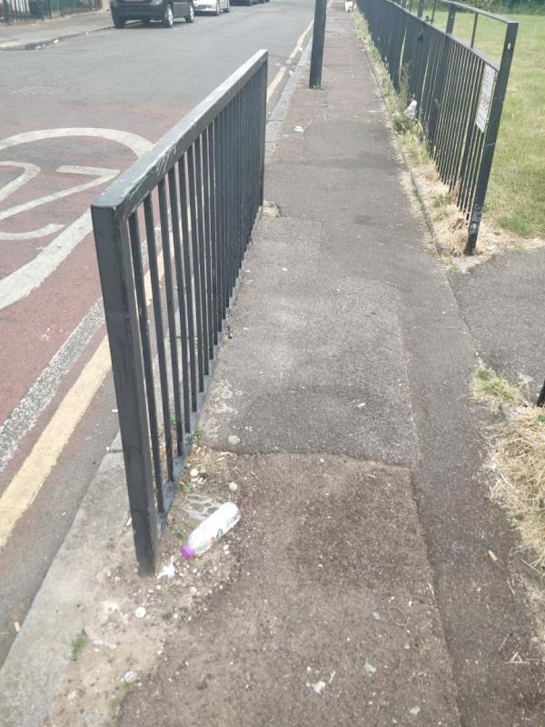 please can you sweep the street. lots of litter has blown from open bins -65 Wellington Road, London, E7 9BU