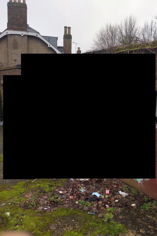 Graffiti and also lots of litter. -35a Mount Pleasant Villas, Finsbury Park, N4 4HA