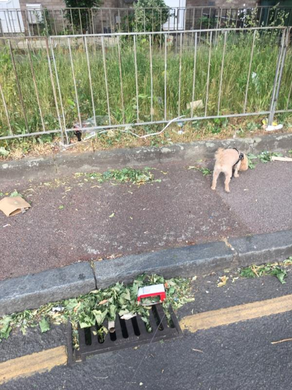 Litter everywhere -15 Cruikshank Road, London, E15 1SN