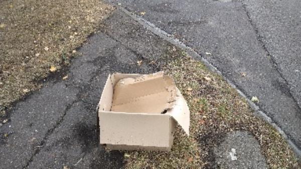 Flytipped boxes no evidence taken -2 Rushden Drive, Reading, RG2 8LJ